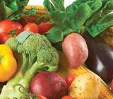 Colourful fruit & veg